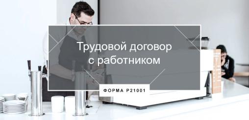 Трудовой договор ИП с работником в 2018 году